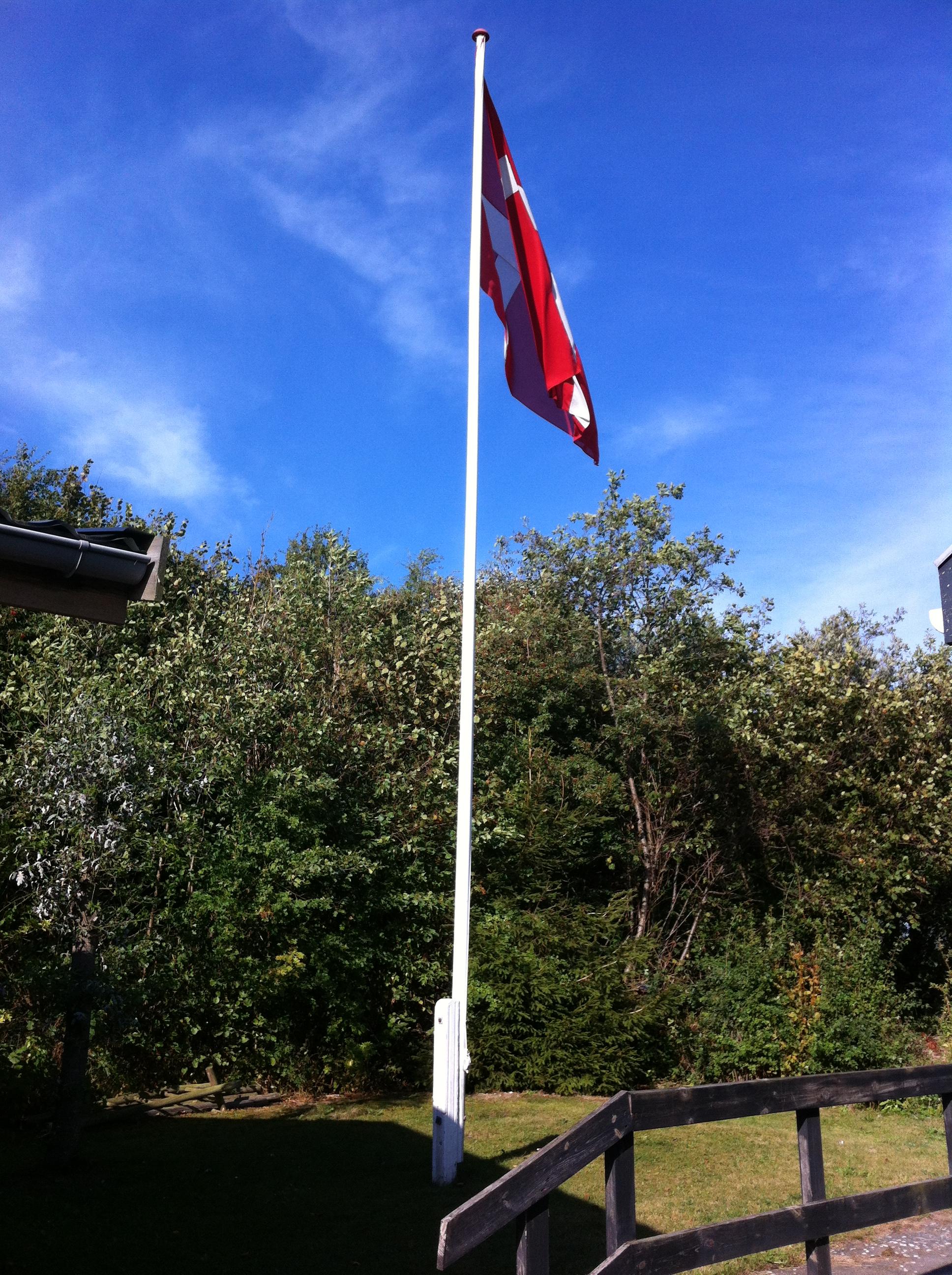 1_flag